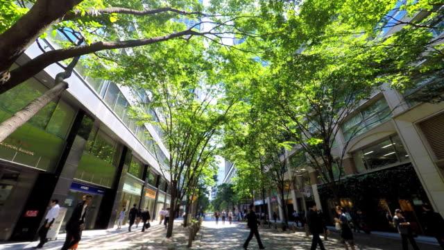 vídeos de stock e filmes b-roll de edifício com verde-procurar no céu - green city
