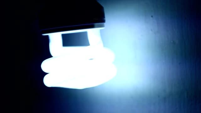 cfl-glühbirne - sportliga stock-videos und b-roll-filmmaterial