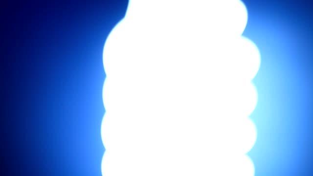 CFL Bulb video