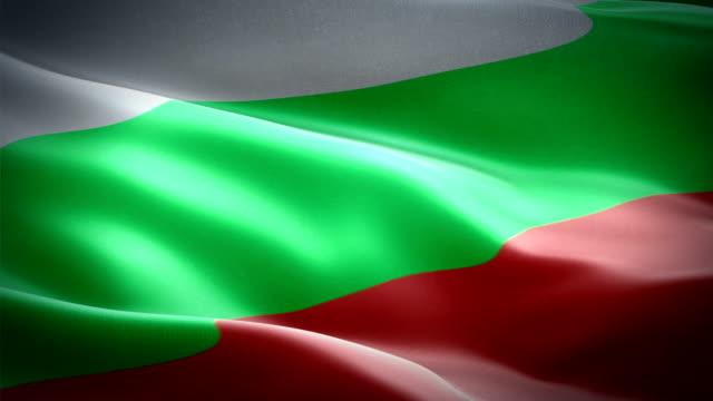 bulgaria flag video waving in wind. realistic bulgarian flag background. bulgaria flag looping closeup 1080p full hd 1920x1080 footage. bulgaria eu european country flags footage video for presentation, film, news - kiss стоковые видео и кадры b-roll