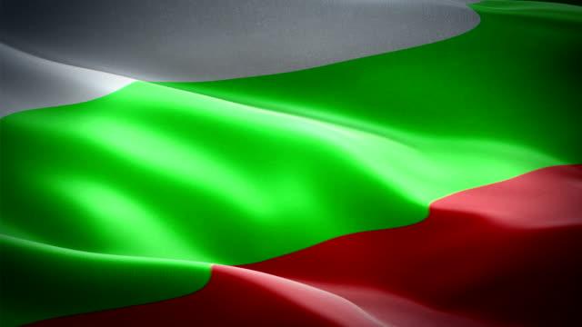bulgaria waving flag. national 3d bulgarian flag waving. sign of bulgaria seamless loop animation. bulgarian flag hd resolution background. bulgaria flag closeup 1080p full hd video for presentation, film, news - kiss стоковые видео и кадры b-roll