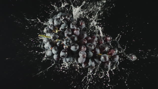 TOP VIEW: Bunch of dark grapes fallы in a water, splashing - Slow motion video