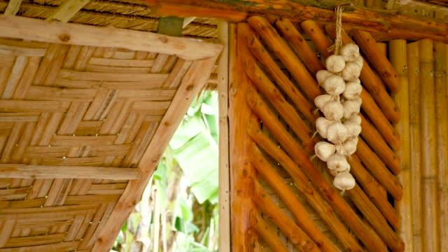massa vitlök på väggen. knippe torkad vitlök hängande på bambuvägg av traditionellt asiatiskt hus - hänga bildbanksvideor och videomaterial från bakom kulisserna