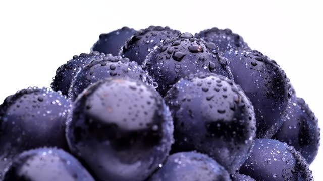vídeos de stock e filmes b-roll de bunch of grapes - grapes