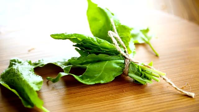 vidéos et rushes de bouquet d'huile verte fraîche biologique, sur une table. - en botte ou en grappe
