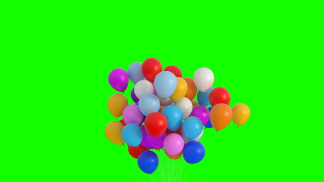 Bundle of Balloons Flies Up and Lingers on the Green Screen Bundle of Balloons Flies Up and Lingers on the Green Screen. Beautiful 3d Animation. Ultra HD 4K 3840x2160 bunch stock videos & royalty-free footage