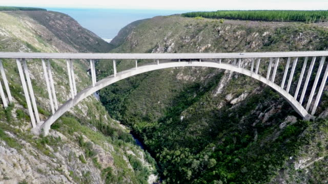 bungee jumping, bloukrans ponte, provincia del capo occidentale, sudafrica - bungee jumping video stock e b–roll