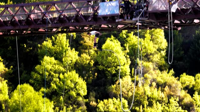 bungy jump - bungee jumping video stock e b–roll