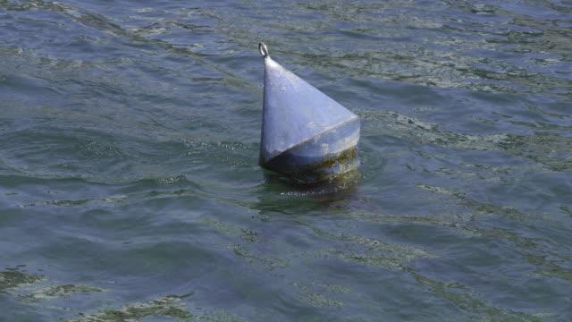 vídeos de stock, filmes e b-roll de uma bóia que salta na água de fluxo de um rio - boia salva vidas