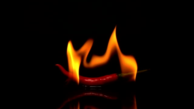 burn chili on black background - chilli con carne video stock e b–roll