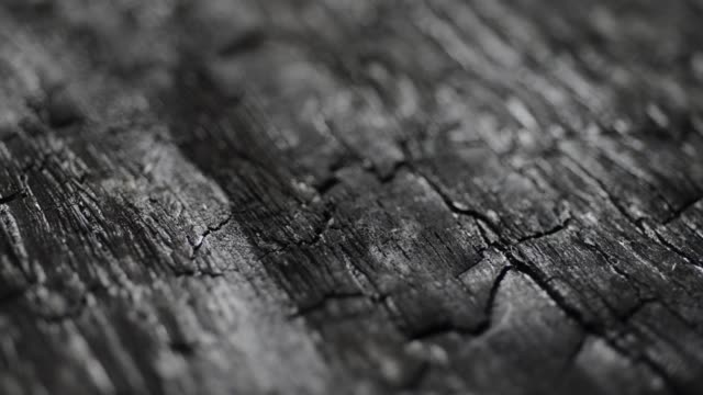 burned wood structure