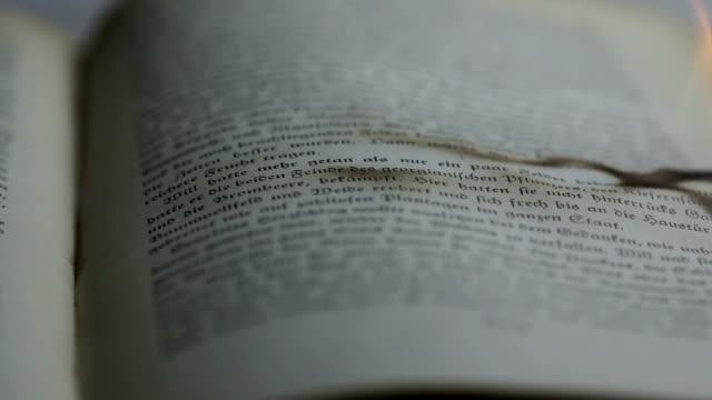 bruciare libro - censura video stock e b–roll