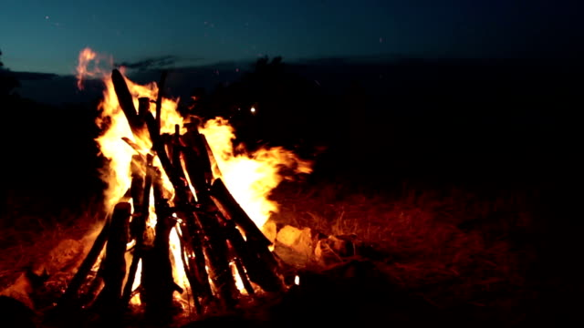 Burning camping fire in the night, stars sky background video