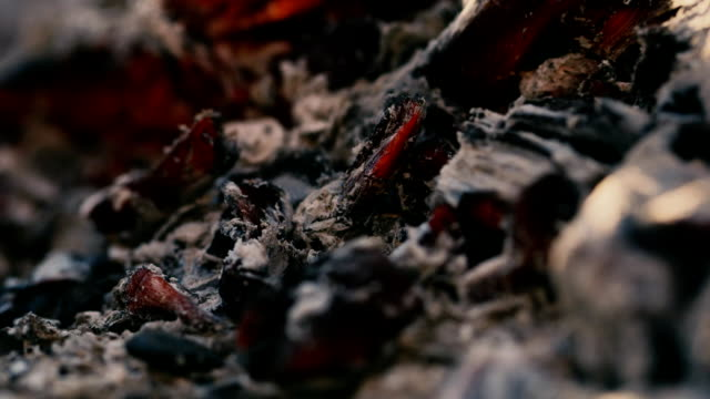 burning charcoal, close-up macro video video