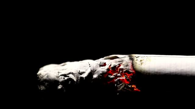 yanan sigara görüntüleri - nikotin stok videoları ve detay görüntü çekimi