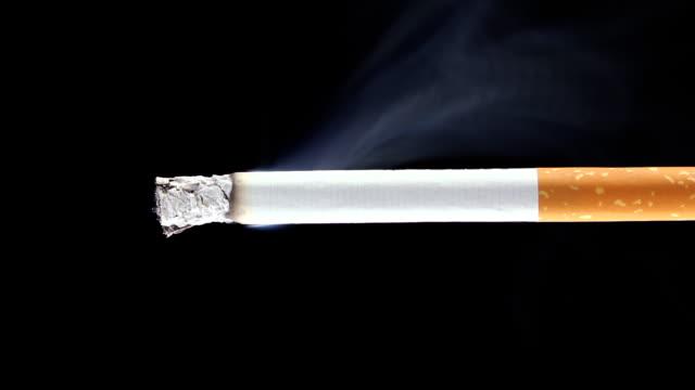 Burning cigarette - (Time-lapse) video