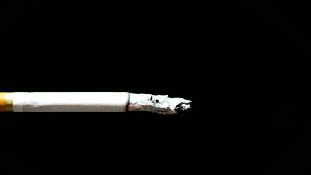 yanan sigara dumanı ile - nikotin stok videoları ve detay görüntü çekimi