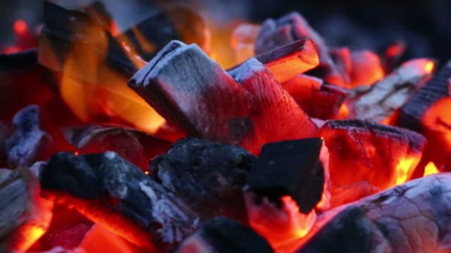 燃焼 炭火でのクローズアップ - 石炭点の映像素材/bロール