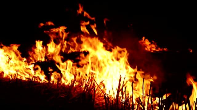 Brandend vuur 's nachts video
