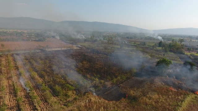 Burning fire on agricultural in thailand. Aerial view video