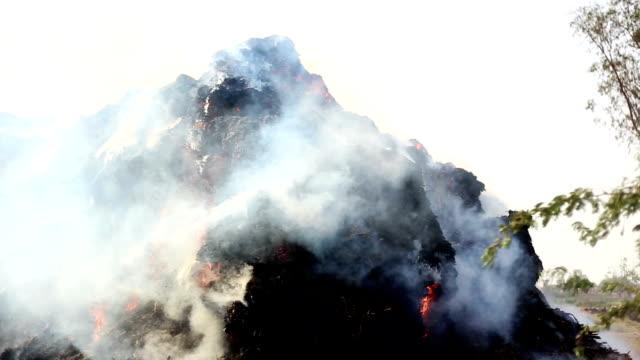 薪の暖炉 - ハリヤナ州点の映像素材/bロール