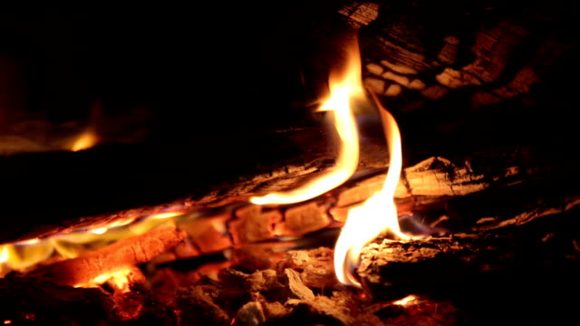 Burning firewood in the fireplace. video