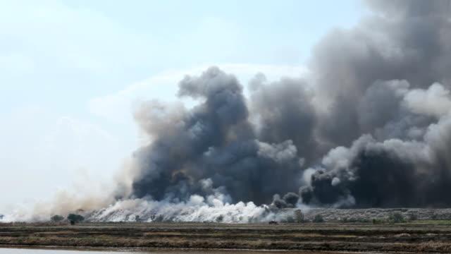 bruciare spazzatura mucchio di fumo - fenomeno naturale video stock e b–roll