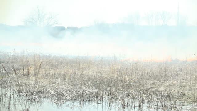 Burning Gras und Feuchtgebiet-Bereich mit katastrophalen Tragegefühl – Video