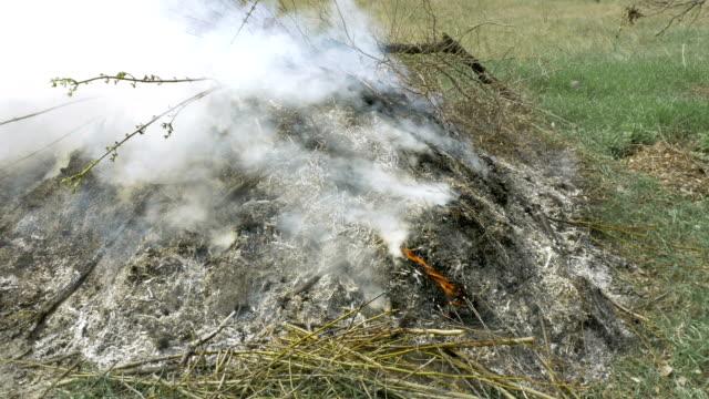 Burning grass foliage heap with heavy dense smoke video