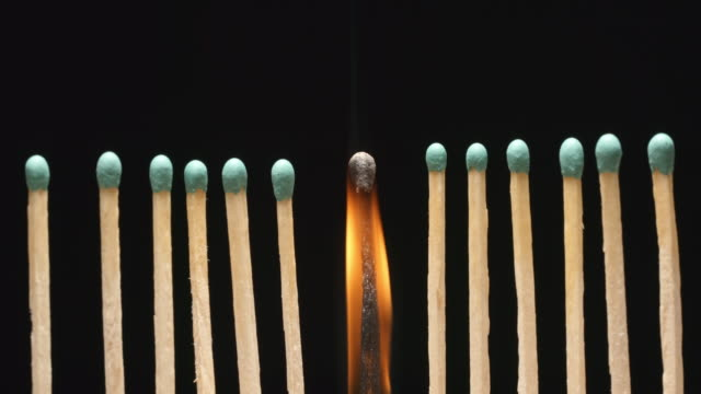 SLOW MOTION: Burning of single matchstick between row of new matchsticks video