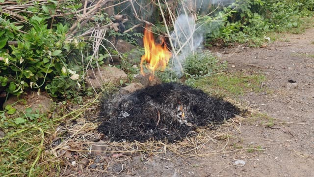 vídeos de stock e filmes b-roll de burning of yard waste, such as leaves, grass, and other natural vegetation ( close up ) - terreno