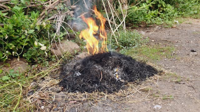 vídeos de stock e filmes b-roll de burning of yard waste, such as leaves, grass, and other natural vegetation ( close up ) - inflamável
