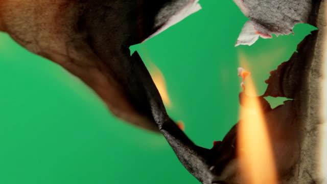 Burning paper. Green screen. video
