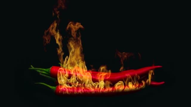 vídeos y material grabado en eventos de stock de pimienta roja ardiente. - cayena guindilla roja