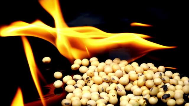 brinnande sojabönor på svart bakgrund slowmotion - misosås bildbanksvideor och videomaterial från bakom kulisserna