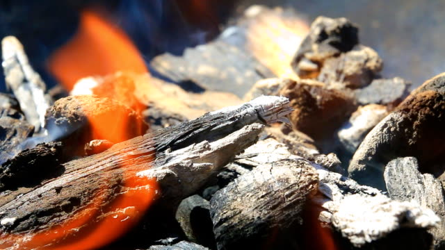 vídeos de stock e filmes b-roll de burning wood in the fireplace - inflamável