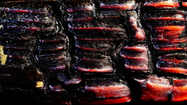 vidéos et rushes de texture du bois brûlant. bouchent. - bois texture