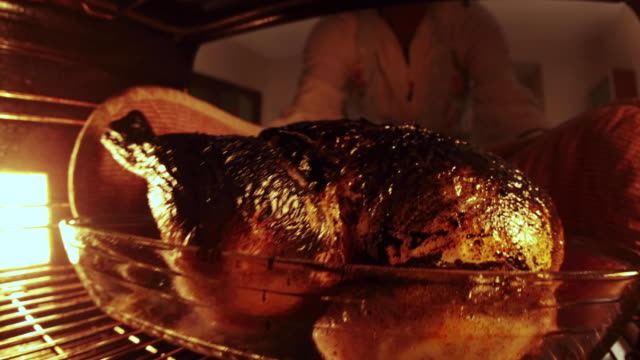vídeos de stock e filmes b-roll de burnt chicken in oven with smoke being removed shot from inside oven - burned cooking