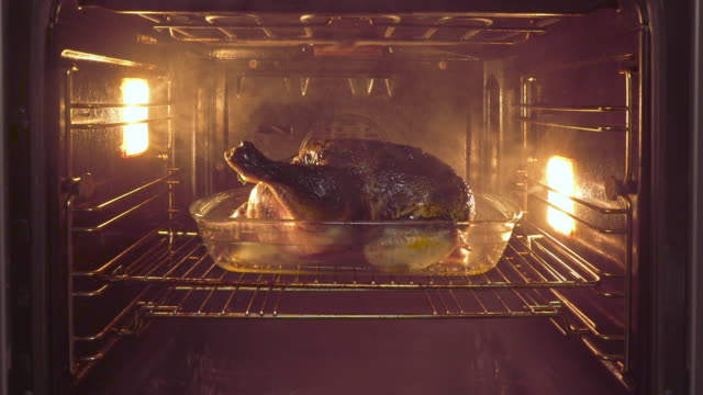 burnt chicken in oven with smoke - bruciato video stock e b–roll