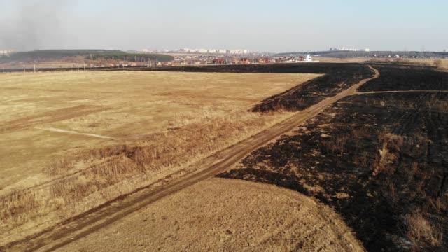 Burnt Field in Spring video