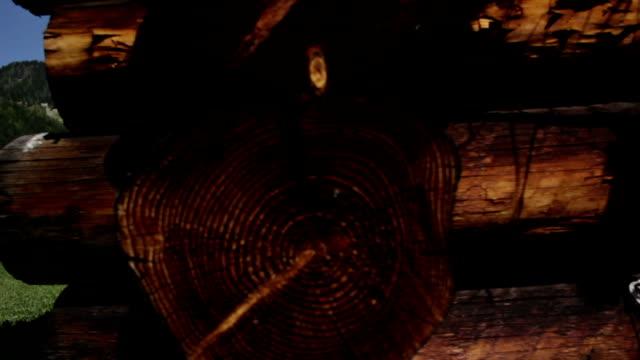 Burnt firewood video