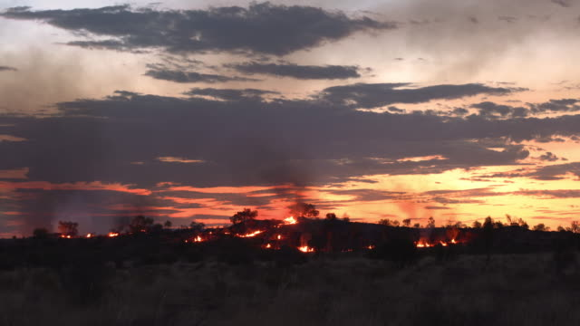 Bush fires burning at twilight in rural areas of Outback Australia. Queensland. Bush fires burning at twilight in rural areas of Outback Australia. Queensland. australia stock videos & royalty-free footage