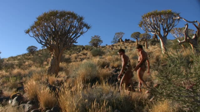 Bush people in Quiver Tree Forest Steadycam-shot of landscape in Keetmanskop of Namibia, Africa - two bush people, father and son, walking namibia stock videos & royalty-free footage