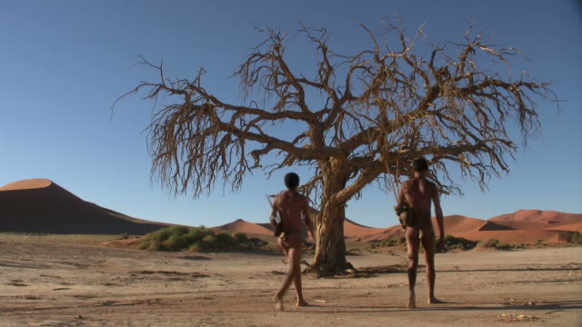 Bush people walking in namib sossus vlei very dry landscape in the Namib desert of Namibia - two bush people walking namibia stock videos & royalty-free footage