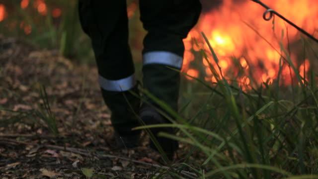 Incendio quema de lucha contra el fuego - vídeo
