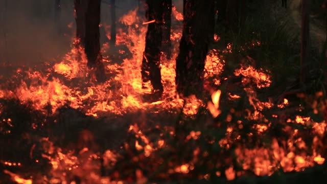 Bushfire burning fire fighting Bushfire burning fire fighting australia stock videos & royalty-free footage