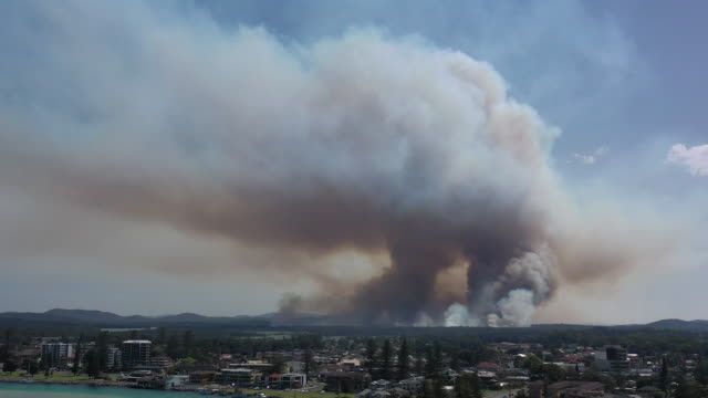 Bushfire Large bush fire in the north of New South Wales, near the town of Tuncurry. australia stock videos & royalty-free footage