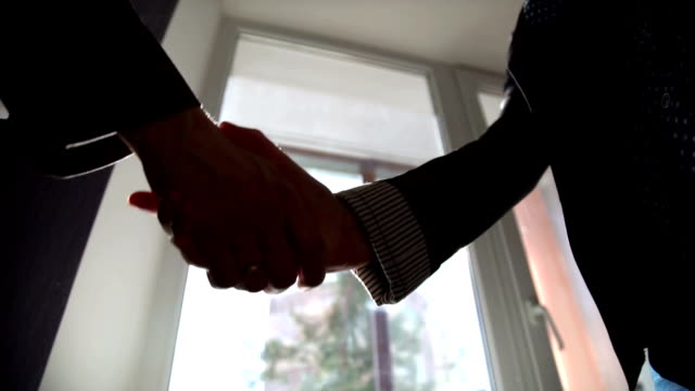 Business handshake. Business handshake and business people concept video
