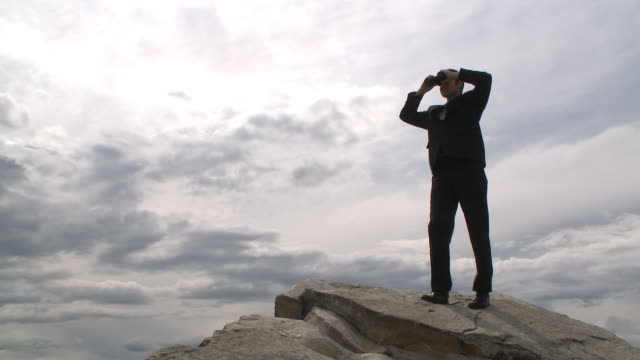 Business man surveys the horizon video