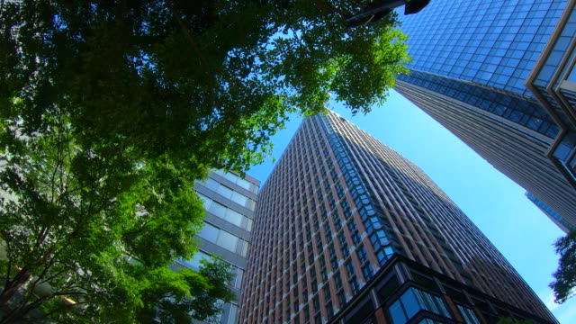 Business towers and Green leaves Business towers and Green leaves office park stock videos & royalty-free footage